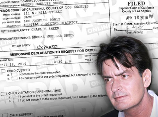 brooke-mueller-charlie-sheen-child-support-case-accusations-pp1