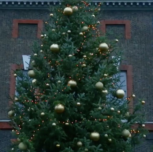 kensington-palace-christmas-tree-2018-2-1544481665[1]
