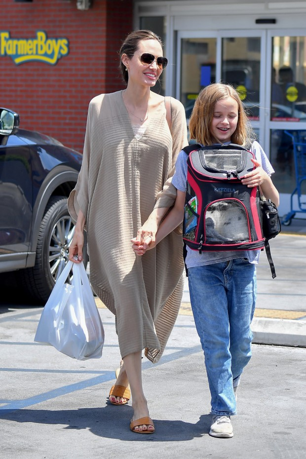 Angelina Jolie takes her daughter Vivienne and their bunny to a pet store for toys and treats