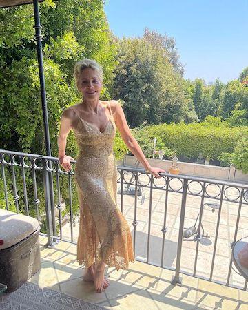 """За гонорар """"Основного инстинкта"""" Шэрон Стоун не смогла купить себе даже платье - 1"""