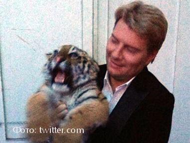 Николай Басков с тигренком
