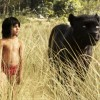 В РЕТА поблагодарили продюсеров фильма «Книга джунглей»