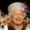 Елизавета II потеряла предпоследнюю собаку