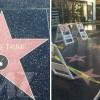 Звезда Дональда Трампа на Аллее Славы теперь под охраной полиции