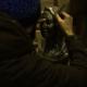 Сестра Фриске показала первые фотографии памятника певице