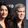 Джордж Клуни из-за скорых родов жены Амаль отменил все поездки