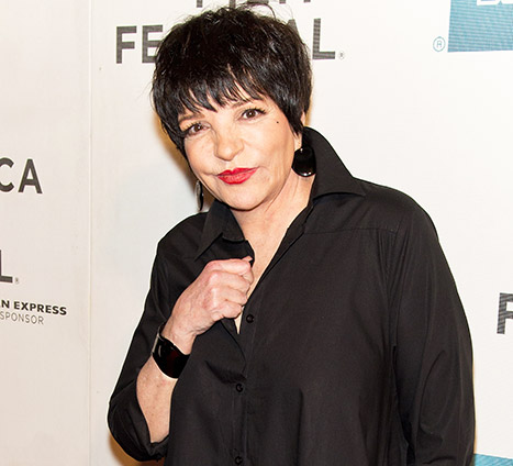 1426721718_liza-minnelli-article