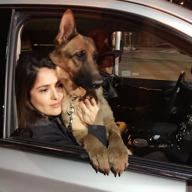 Сальма Хайек с собакой